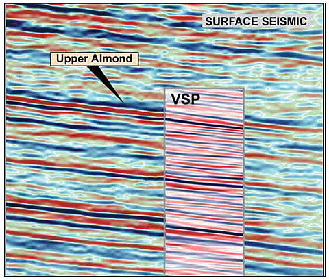 Comparison of a 3-D surface seismic image with a 3-D VSP image slice at the same location. Note the increased resolution and detail of the 3-D VSP image.