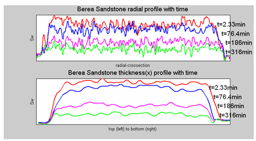 Saturation profile in radial and x directions.