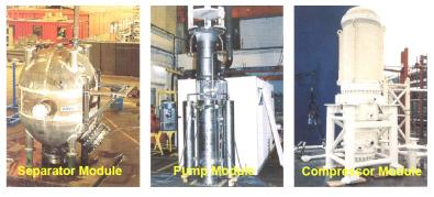 Subsea processing modules