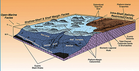 Block diagram of the Desert Creek facies showing the shoreline carbonate deposits in the Paradox Formation of AZ,CO, and UT.
