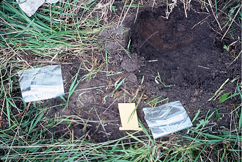 Surface soil gas and microbial samples for geochemical analysis were collected from small, shallow pits.