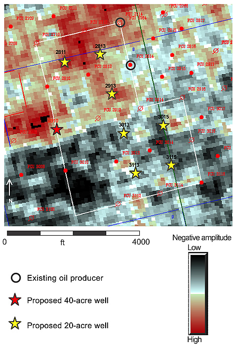 3-D seismic amplitude extractions provide excellent images of porosity distribution for selecting optimum areas for infill drilling. Areas of high negative amplitude (orange-red colors) define high porosity, whereas gray-black areas define low porosity. 3-D data show that proposed wells in the northern half of the area will encounter reservoir porosity but those in the southern half will not. Based on these data, the latter wells were not drilled.