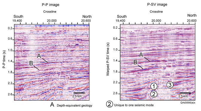 Comparison of deep, depth-equivalent, P-P and P-SV data windows, Gulf of Mexico. These data are a classic example of the principle of elastic-wavefield seismic stratigraphy in that the sequence geometry defined by P-SV features 1 and 2 differs from the P-P geometry.