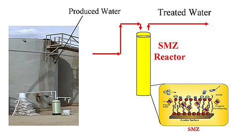 Vapor-phase bioreactor with surfactant-modified zeolite membrane.