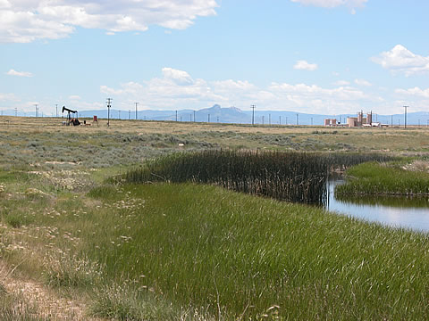 View of a produced-water discharge in Elk Basin field in the Big Horn Basin that is used to create habitat and provide water for livestock and wildlife.