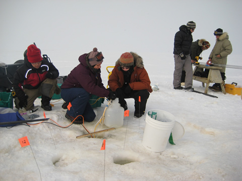 Foreground (left to right) – Ruo He, Monica Heintz, Mary Beth Leigh collecting water samples. Background (left to right) – John Pohlman, Mat Wooller, and Ben Gaglioti preparing core liner and coring head for deployment.