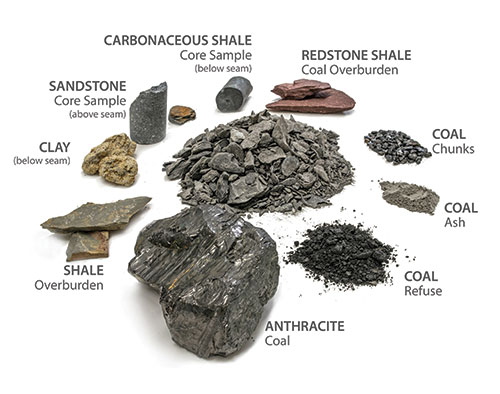 Coal REE Sample