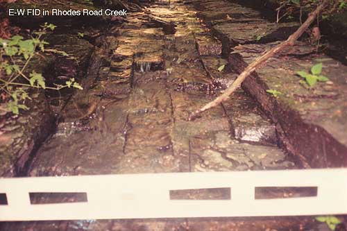 Exposed Fracture Image: E-W FID in Rhodes Road Creek